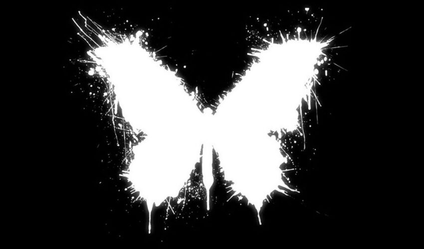 What Is the Butterfly Effect, and How Does It Work? Here are Few Examples of the Butterfly Effect That Will Astound You.